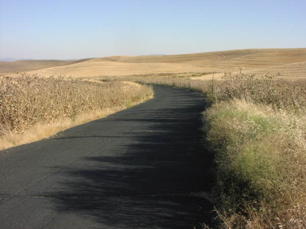 Palouse road