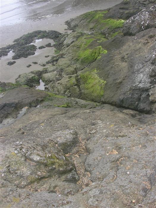 Baker Bay shore rocks
