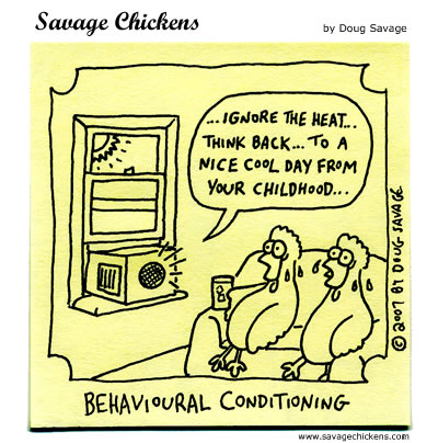 Chicken conditioning