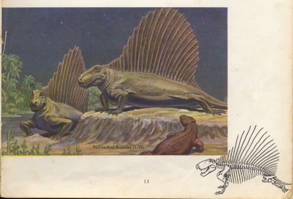 Ruffle-osaurus
