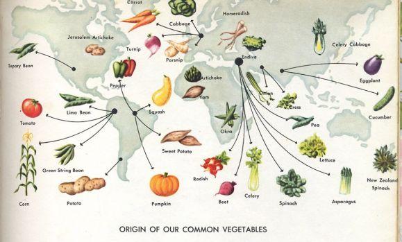 Origins of vegetables