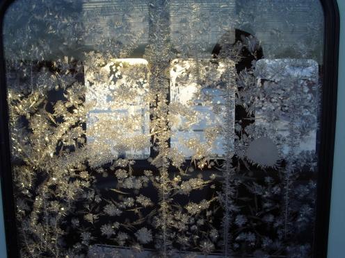 ice-flowers11