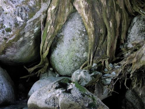 Martin Creek rocks