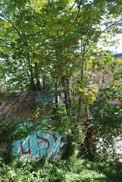 Lush graffiti 2