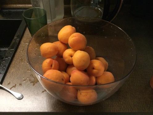 3 pounds (1 & 1/3 kilos) apricots