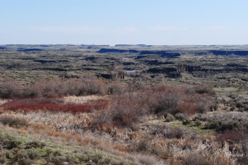The Drumheller Channels/Red Willows
