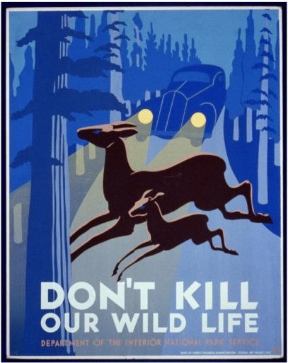 Don't Kill Our Wildlife