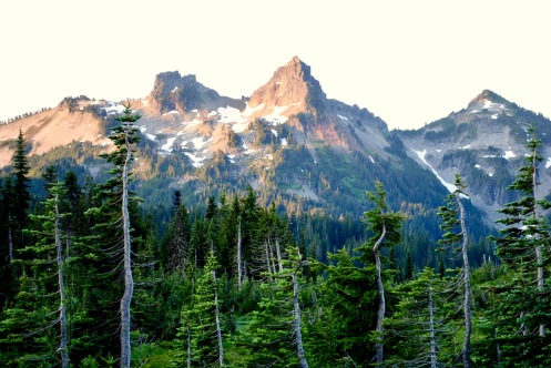 Tatoosh from Paradise